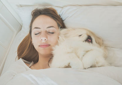 Sleeping With your Dog in the Bed